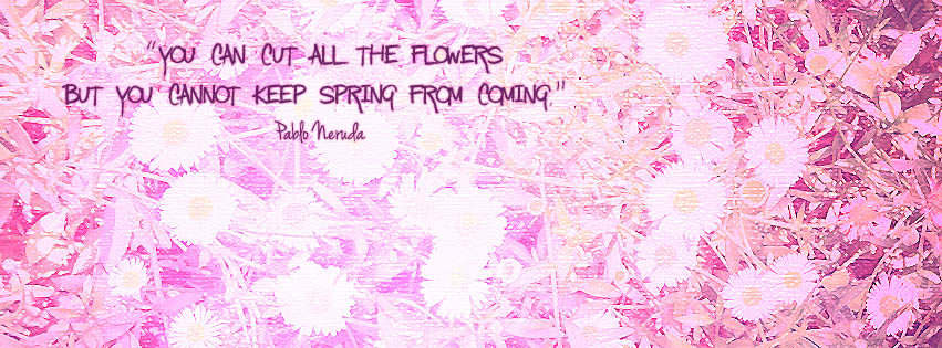 Timeline Cover You Can Cut All The Flowers But You Cannot Keep