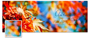 Autumn Timeline Cover Preview