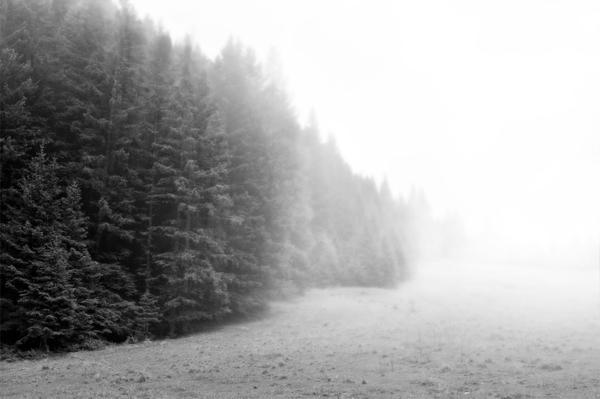 Realistic Mist Tutorial