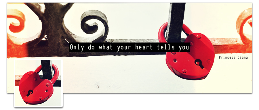 Heart Timeline Cover