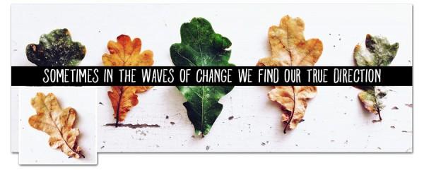 Change Timeline Cover