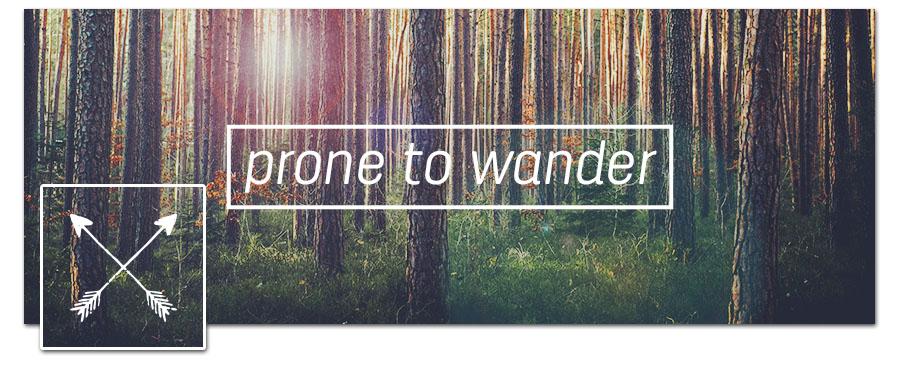 Wander Timeline Cover